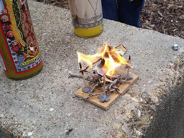 Як американські студенти с почестями хоронили таргана - фото 5