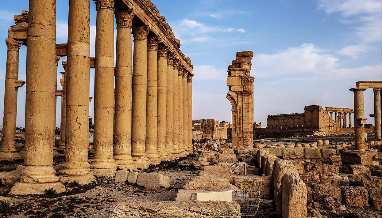 Картинки по запросу пальмира