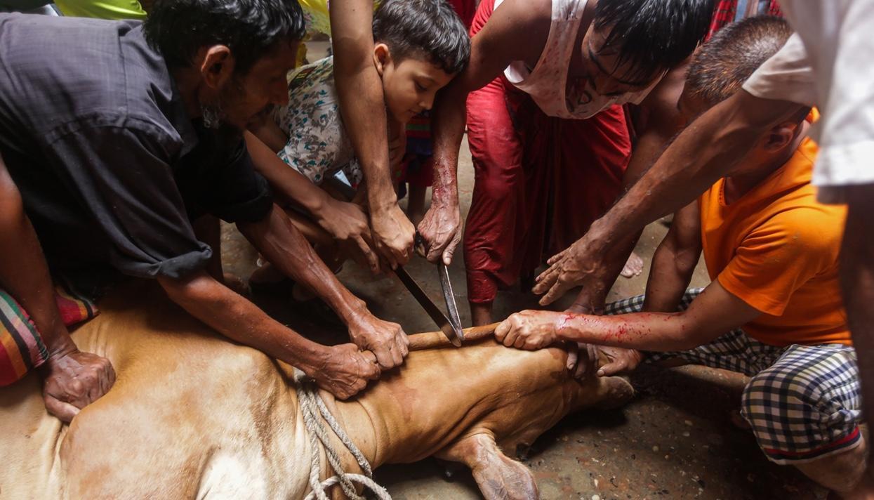 Столицу Бангладеш наводнили реки скровью убитых вКурбан-байрам животных