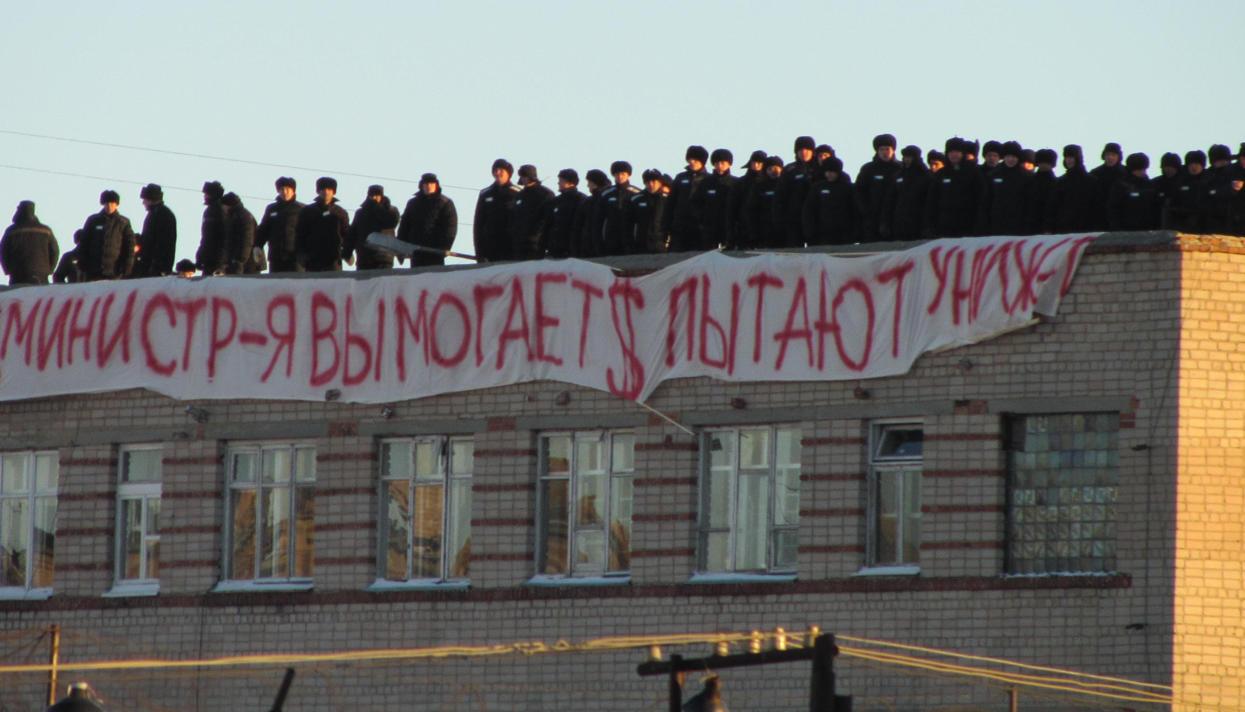 Какие виды пыток хотят узаконить в россии