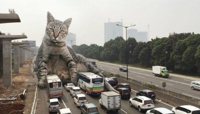 Котзилла! Индонезийский художник вписывает огромных кошек вгородские пейзажи