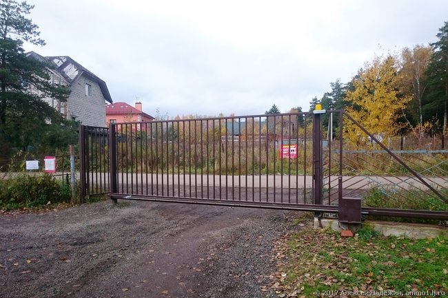 Дачные ворота самостоятельно подписались наплатные рассылкиМТС: «Автоновости» и«Полезные советы»