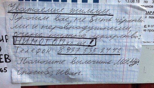 Шестиклассник расклеил поВолгограду объявления спросьбой найти лекарство для мамы. Ему ответили совсего мира