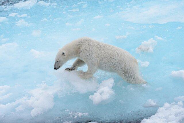 Многие изменения климата уже необратимы, но дальше может быть еще хуже. Эксперты ООН опубликовали 1300-страничный доклад о глобальном потеплении