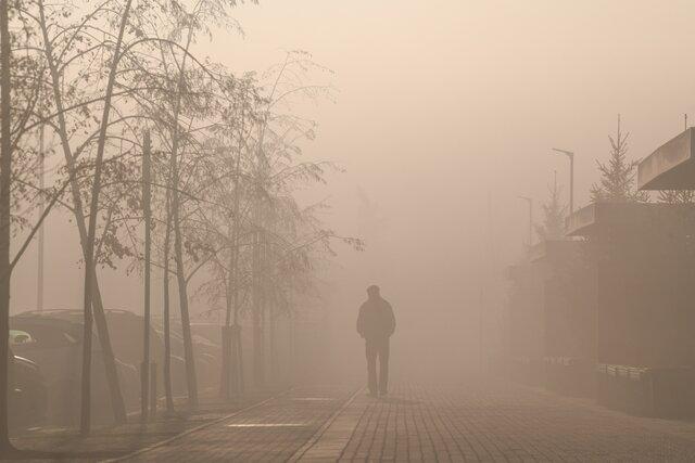 Екатеринбург затянуло дымом от тлеющих торфяников. Посмотрите, как выглядят улицы города. Фотографии