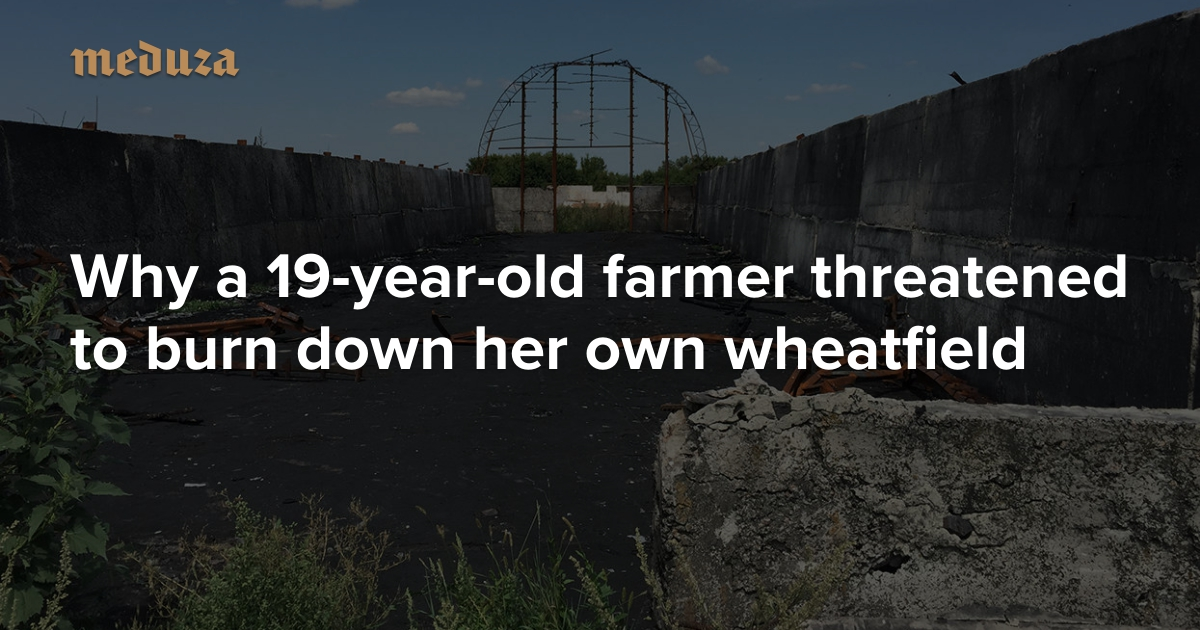 b41cae3ded8  Your field has been impounded  Why a 19-year-old farmer threatened to burn  down her own wheatfield — Meduza