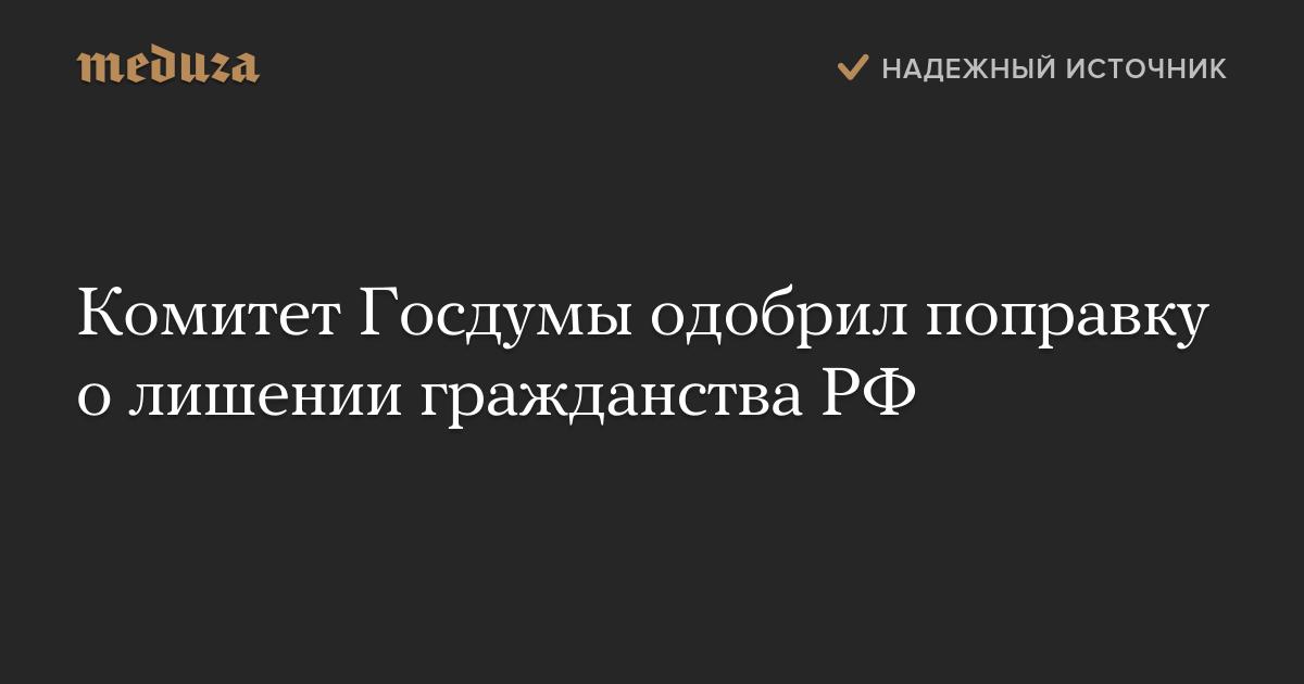 Комитет Госдумы одобрил поправку о лишении гражданства РФ