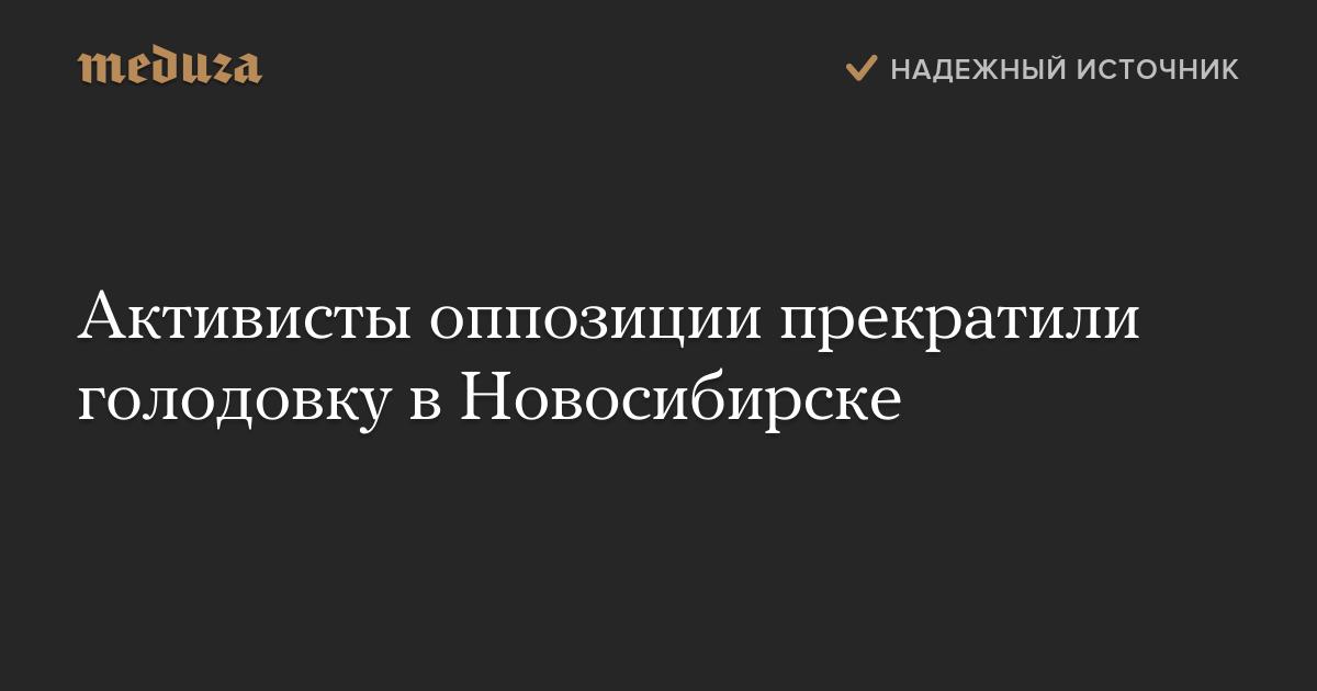 Активисты оппозиции прекратили голодовку в Новосибирске — Meduza