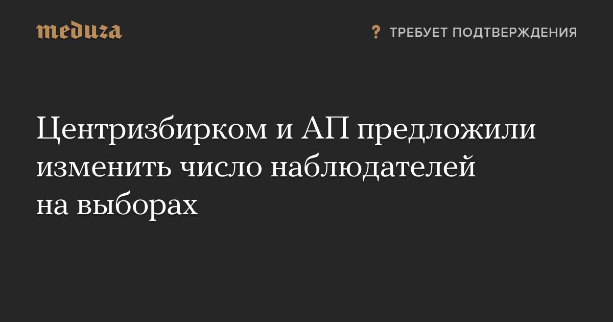 Центризбирком и АП предложили изменить число наблюдателей на выборах — Meduza