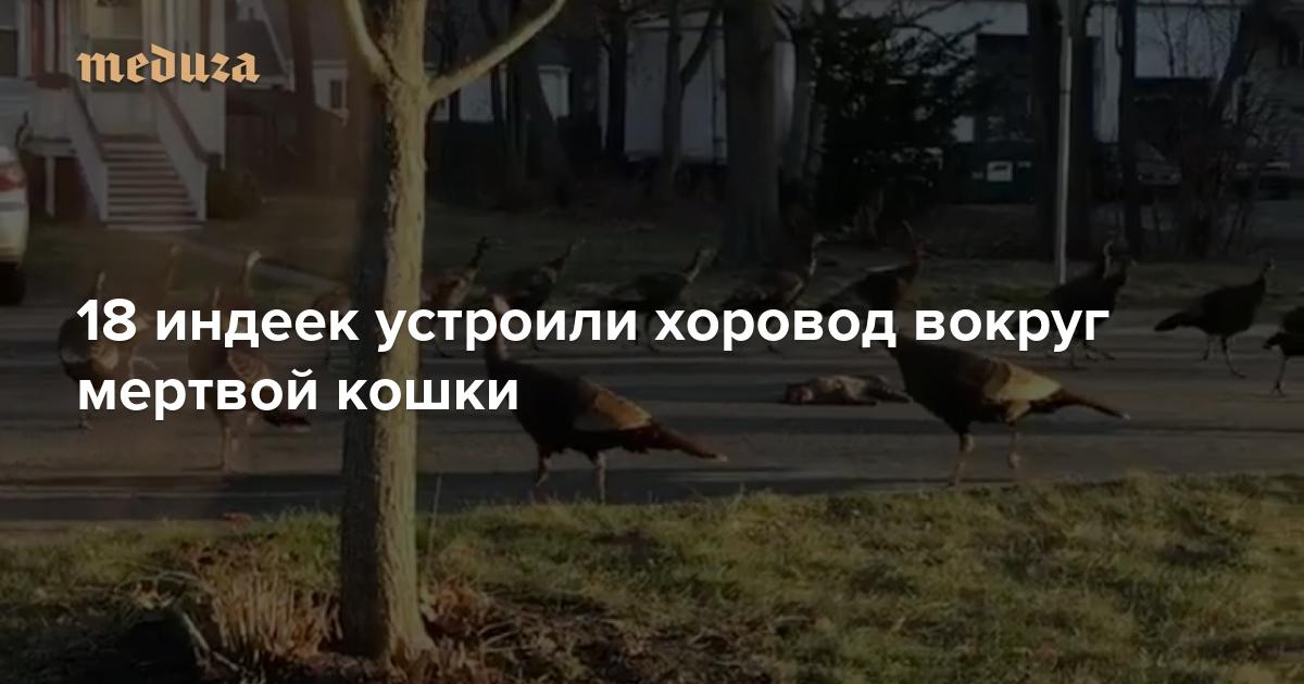 5 рублей 1986 года стоимость