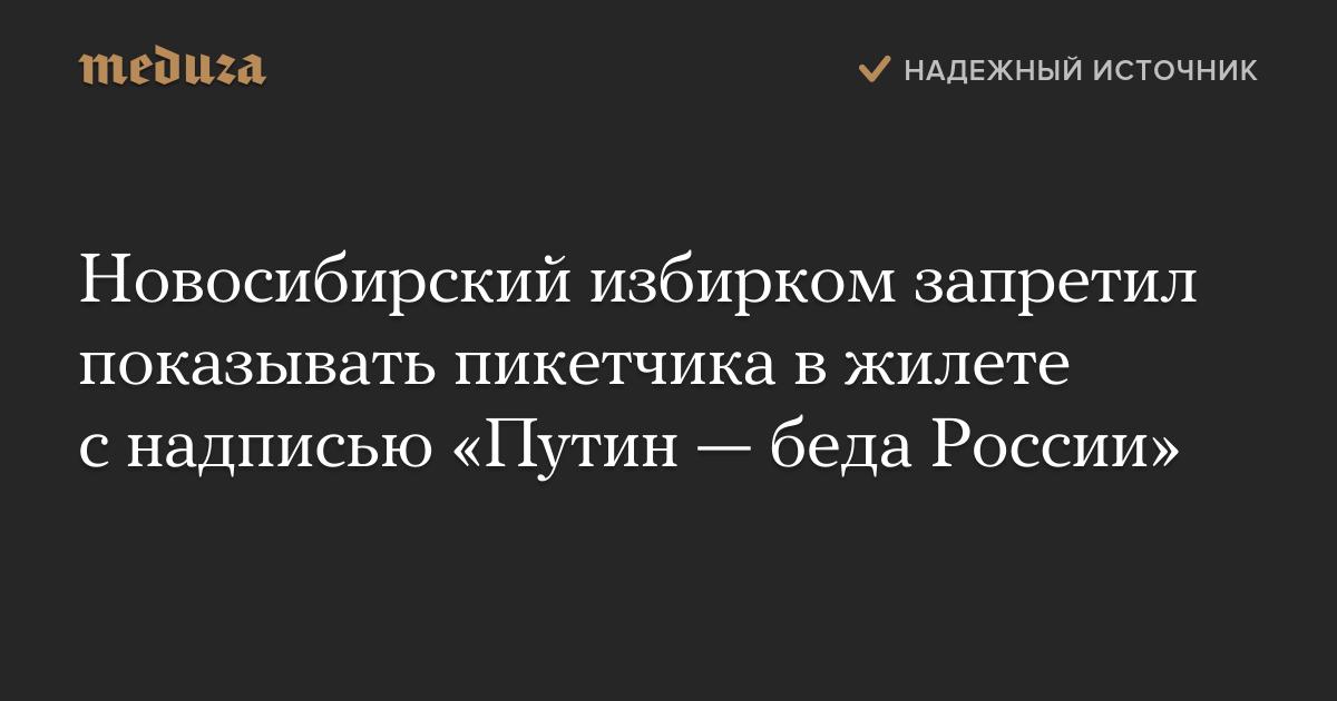 Новосибирский избирком запретил показывать пикетчика вжилете снадписью «Путин— беда России» — Meduza
