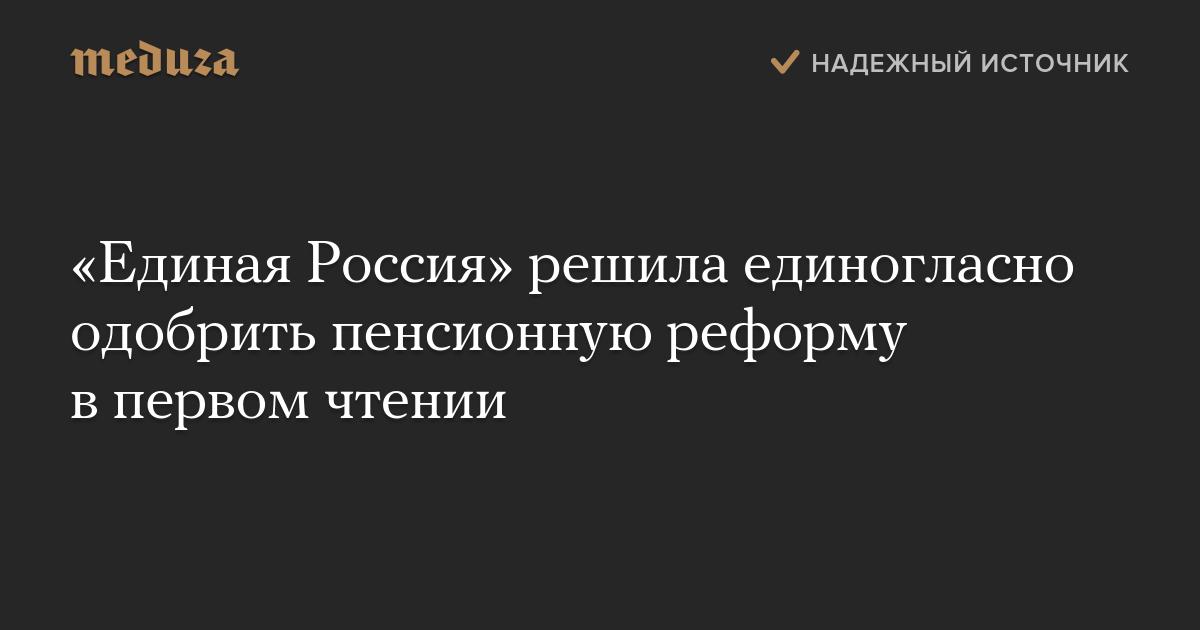 Картинки по запросу единая россия пенсионная реформа
