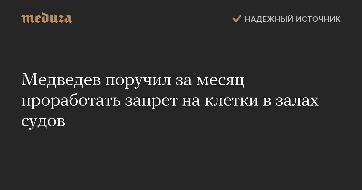 Медведев поручил замесяц проработать запрет наклетки взалах судов