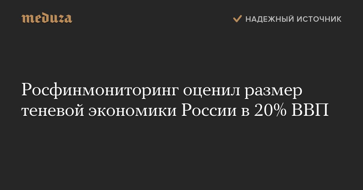 Росфинмониторинг оценил размер теневой экономики России в20% ВВП