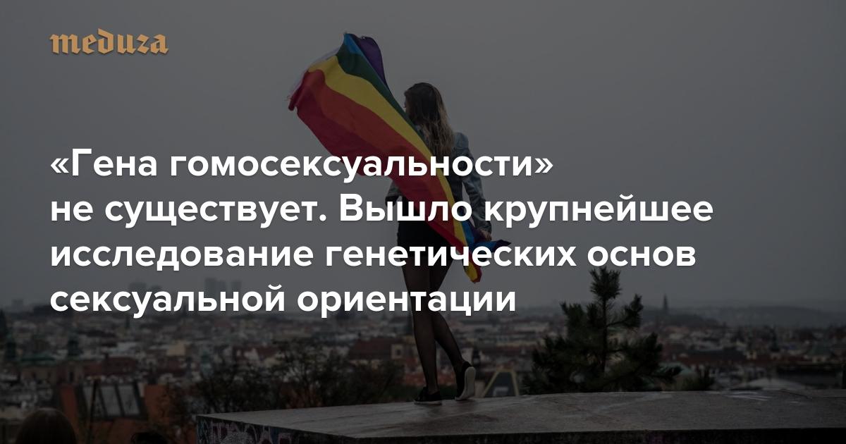 https://meduza.io/feature/2019/09/01/gena-gomoseksualnosti-net-o-shkale-kinsi-mozhno-zabyt-nasledstvennost-po-prezhnemu-vazhna