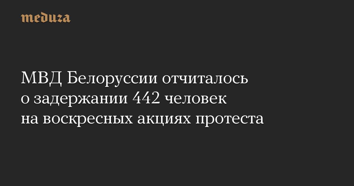В Белоруссии на акциях протеста 20 сентября задержали 442 человека — МВД