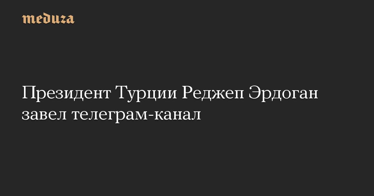 Президент Турции Реджеп Эрдоган завел телеграм-канал