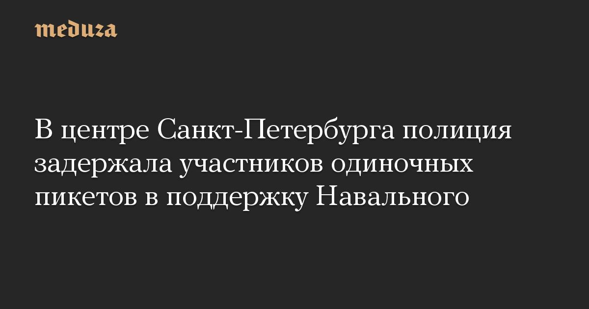 Вцентре Санкт-Петербурга полиция задержала участников одиночных пикетов вподдержку Навального