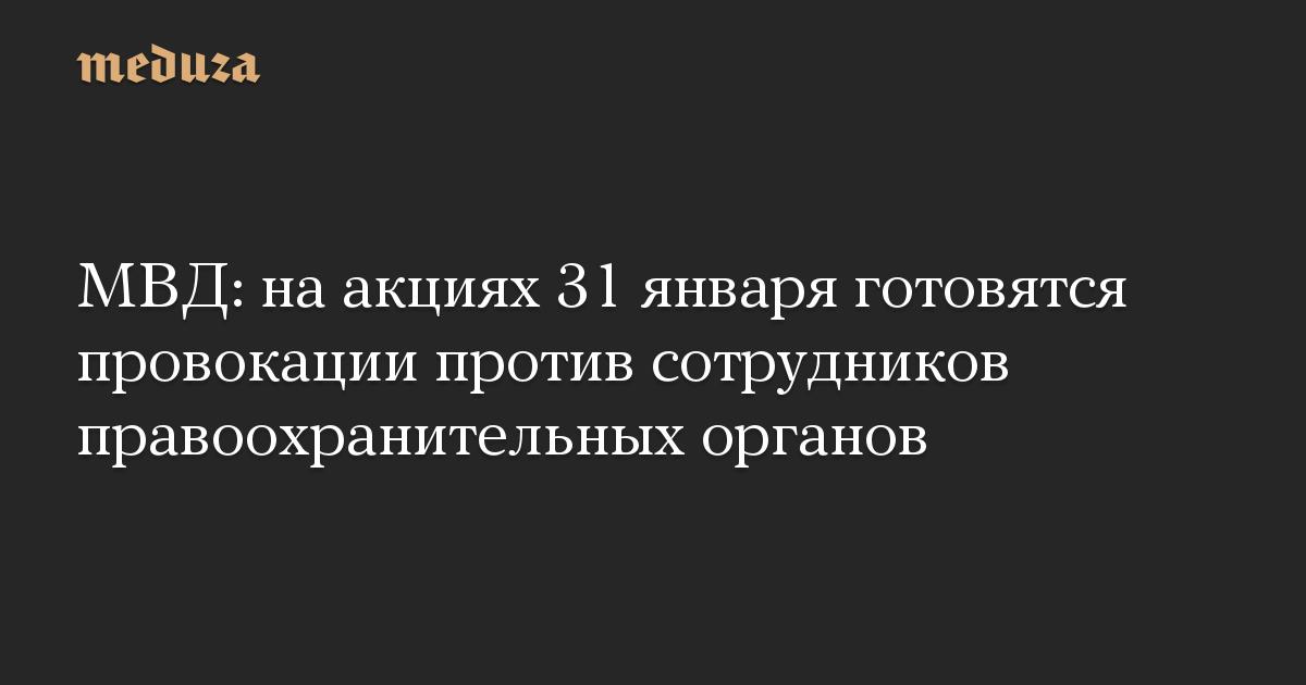 МВД: наакциях 31января готовятся провокации против сотрудников правоохранительных органов