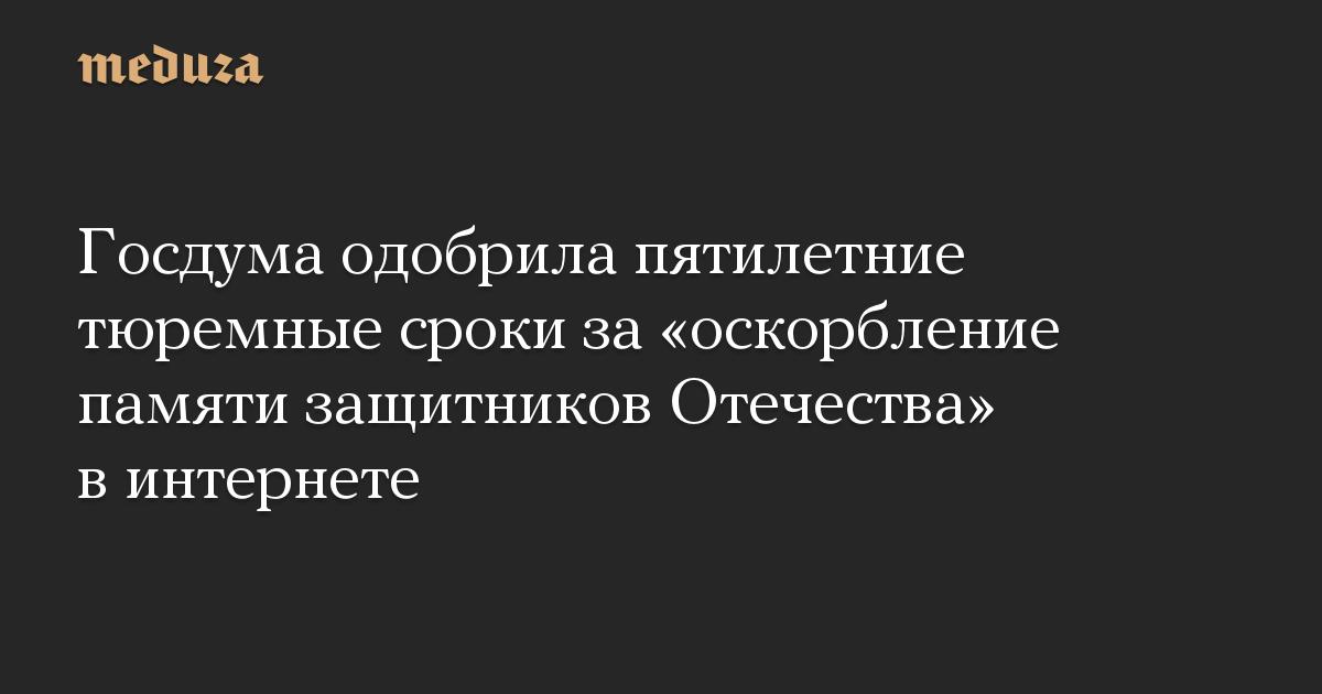 Госдума одобрила пятилетние тюремные сроки за оскорбление памяти защитников Отечества в интернете