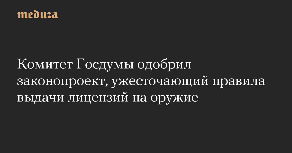 Комитет Госдумы одобрил законопроект, ужесточающий правила выдачи лицензий наоружие
