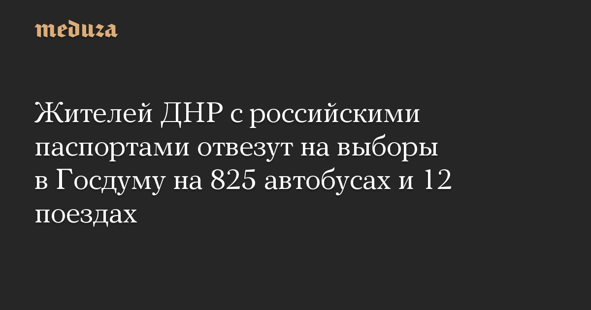 Жителей ДНР с российскими паспортами отвезут на выборы в Госдуму на 825 автобусах и 12 поездах