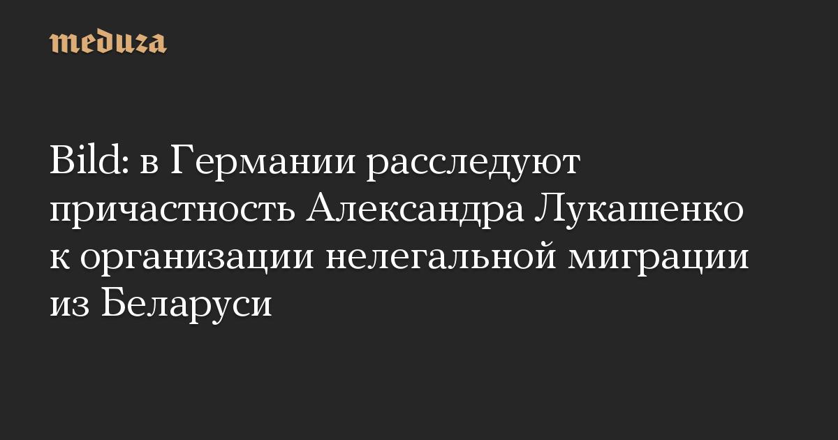 Bild: в Германии расследуют причастность Александра Лукашенко к организации нелегальной миграции из Беларуси