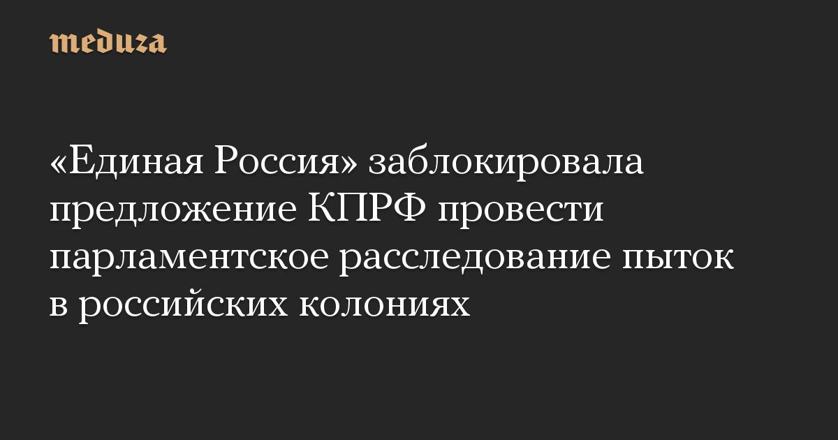 Единая Россия заблокировала предложение КПРФ провести парламентское расследование пыток в российских колониях